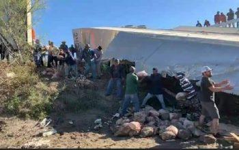 Vuelca tráiler que transportaba piernas de cerdo y pobladores impiden rapiña